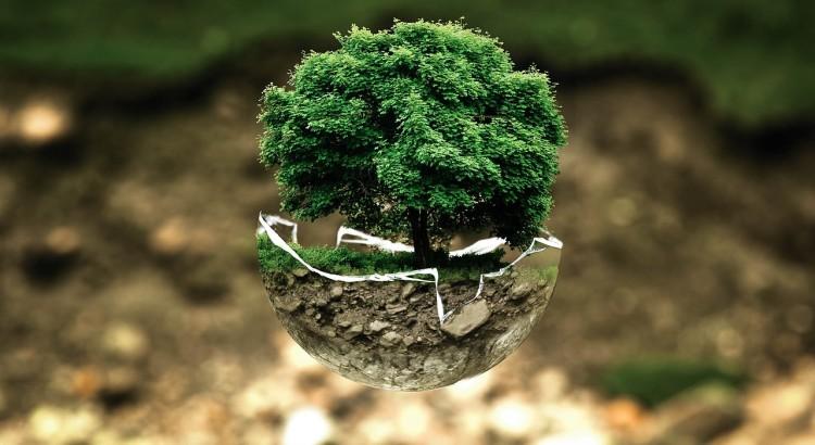 Cause dell'inquinamento ambientale